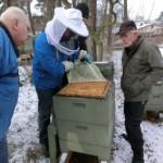 Nachschau auf Bienensitz